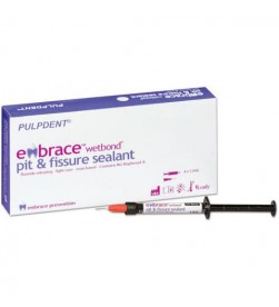 EMBRACE P & F SEALANT, NATURAL 4X1.2ML SYR+20 TIPS